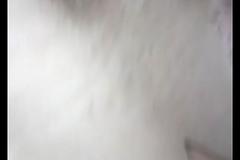 bhabhi  pussy upskirt