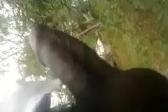 telugu lady sucking dick