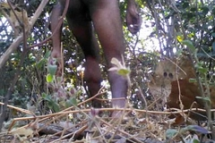 Tarzan Boy Sex In The Forest Wood