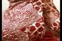 Bangladeshi prostitute after eradicate affect sex( I FUCKED HER) 3