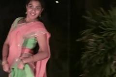 Beautiful Telugu  dance